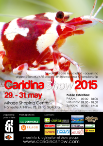 Slovak Caridina Show 8 - eng