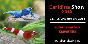 caridina-show-2016-banner-na-sirku2